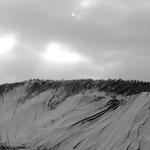 Plateau d'Auvers-sur-Oise, petite neige 29 11 2010 (2)