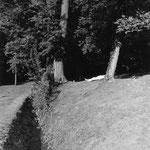 Abbaye de Maubuisson, le dormeur du parc