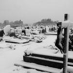 Cimetière d'Auvers-sur-Oise, 8 décembre 2010