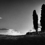 Paysage du Gers, série 2 (28)