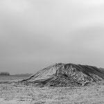 Plateau d'Auvers-sur-Oise, petite neige 29 11 2010 (3)