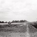 Vexin, Nesles-la-Vallée, la croix pattée