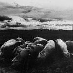 Gers, le bouquet de cochon (9)