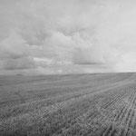 Vexin, le plateau d'Auvers-sur-Oise (86)