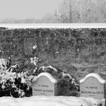 plateau d'Auvers neige 20 décembre 2010 007