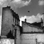 La friche du Hainaut (5)