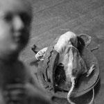 La visite à  Monsieur rat (1)