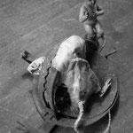La visite à  Monsieur rat (4)