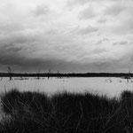 Brenne, les étangs (10)