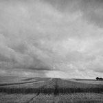 Vexin, le plateau d'Auvers-sur-Oise (70)