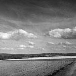 Vexin, colza sur la plateau d'Auvers-sur-Oise