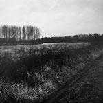 Brenne, les étangs (7)