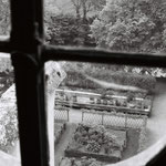 Le jardin médiéval, fragment (8)