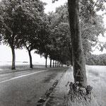 Route de Senlis (Oise) 1
