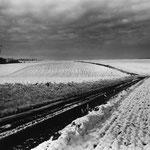 Vexin, le plateau d'Auvers-sur-Oise (12)
