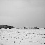 Plateau d'Auvers 8 bis décembre 2010 015