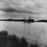 Brenne, les étangs (1)