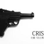 小展『CRISIS』DM