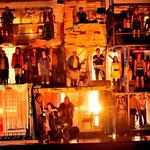 Theaterhund - Halkins Fitz