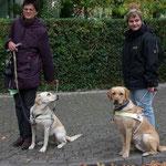 Blindenführhunde - Halkins July-Emily&Luke v. Weberlis Rebberg