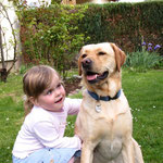 Familienhund - Halkins Ronda