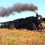 52 8131 mit Sdz hinter Hettstedt auf dem Weg nach Klostermannsfeld