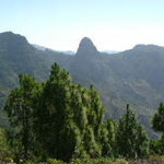 La Gomera Parque nacional Garajonay