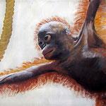 Orang Utan, 2010, Acrylskizze auf Leinwand 30 x 42 cm