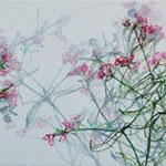 «Bärgblueme» II 2012 20x80cm, verkauft