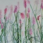 «Bärgblueme» III 2012 20x80cm, verkauft