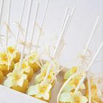Cakepops Geel, Cakepops Den Bosch