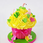 CakeSmash Tropical, Giant CupCake, Cakesmash Den Bosch