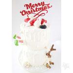 Santa Slipped,  ChristmasCake, Taart Den Bosch