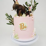 Pink Jungle Elephant Cake, Bo 1 Jaar, Taart Den Bosch