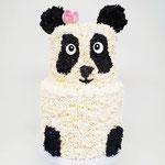 Pi pa Pandataart, June 3 jaar, Taart Den Bosch