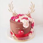 Rudolph Cake,  ChristmasCake, Taart Den Bosch