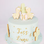 Alpaca BirthdayCake, Tess en , Taart Den Bosch