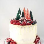 WinterWonderLand ChristmasCake, ChristmasCake, Taart Den Bosch