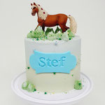 Horse Cake, Stef, Taart Den Bosch