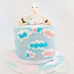 Stork GenderReveal, GenderReveal Cake Den Bosch