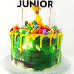 National Geographic Junior taart in opdracht van Blink Uitgeverij