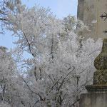 Villa Godi Piovene - Oratorio La Favallina (particolare)