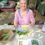 offene Werkstatt Gudwork, Kurs Teilnehmerin bei der Auslese vom Waldmeister, Kräuterworkshop
