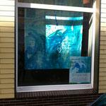Außenansicht des Schaufensters III