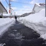 今日の店の前、これまでにない積雪量に唖然!!