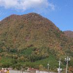 11月8日撮影:龍頭山