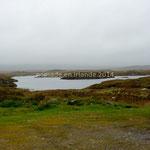Dans le Connemara