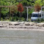 Au camping Pa Emer à Golem, nous sommes installés à 2 pas de l'eau.