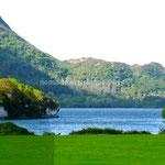 Vue sur le Lough Laene dans le parc de Muckross House