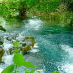 Parc de Krka, la rivière est calme au début
